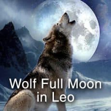 Wolf Full Moon in Leo