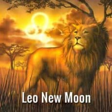 Leo New Moon July 23